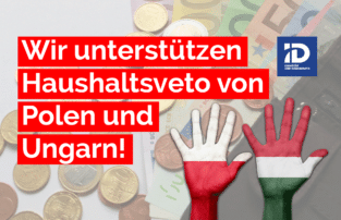 Die AfD-Delegation im EU-Parlament unterstützt die Regierungen von Polen und Ungarn in ihrem Bestreben, ihre nationalstaatliche Souveränität gegen die Übergriffe aus Berlin und Brüssel zu verteidigen.