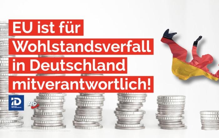 Die EU ist für den langsamen aber stetigen Wohlstandsverfall in Deutschland mitverantwortlich. Warum?